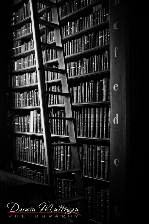 Ireland-Dublin-Trinity-College-Library-ladder-and-books