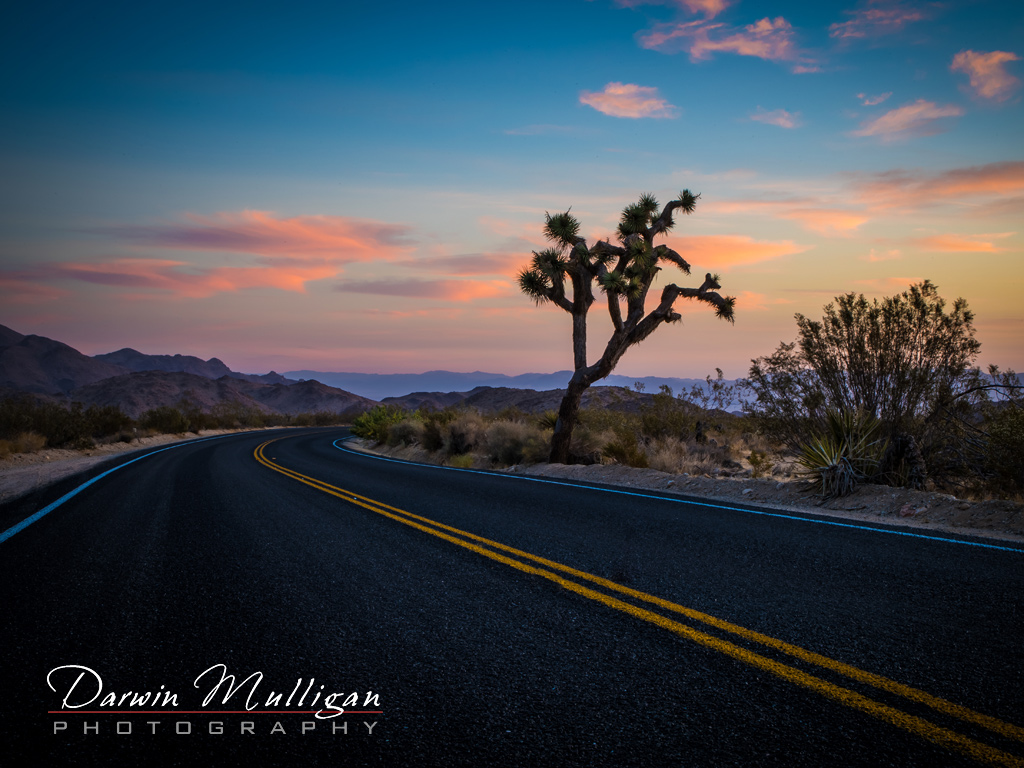 Joshua-Tree-National-Park-California-Highway-early-morning