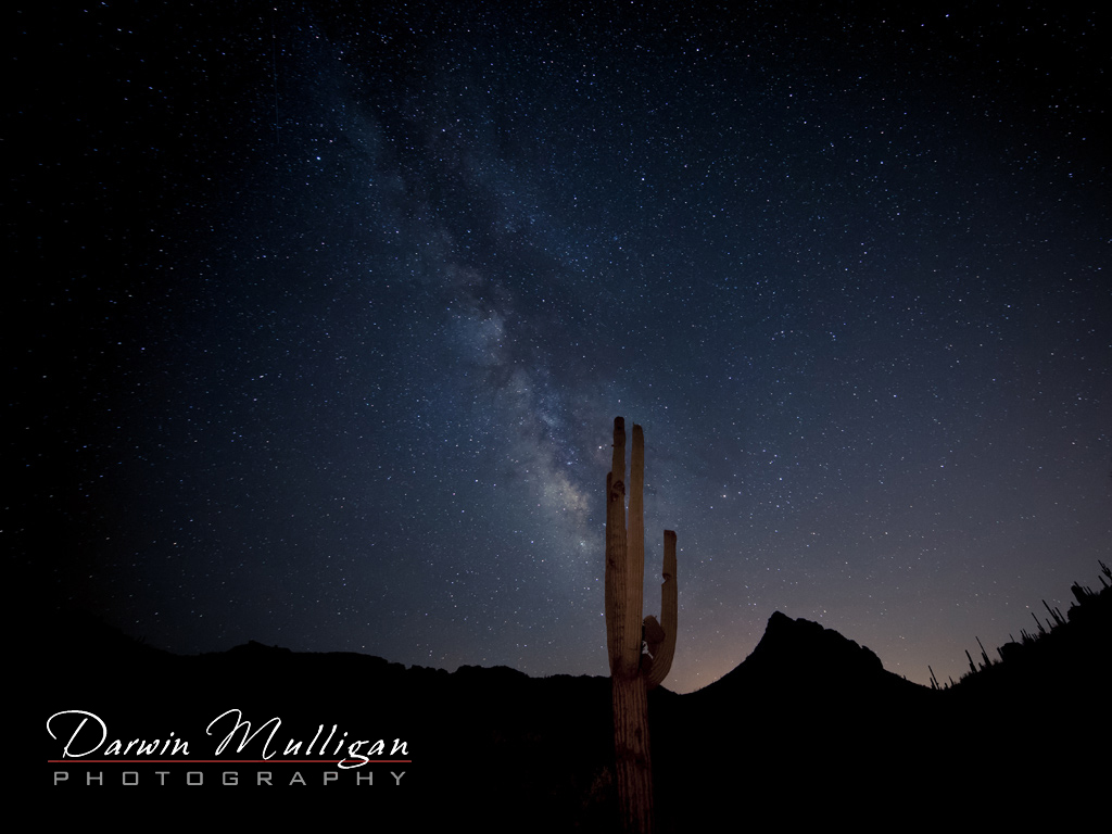 Milky-way-and-cactus-superstition-mountains-arizona