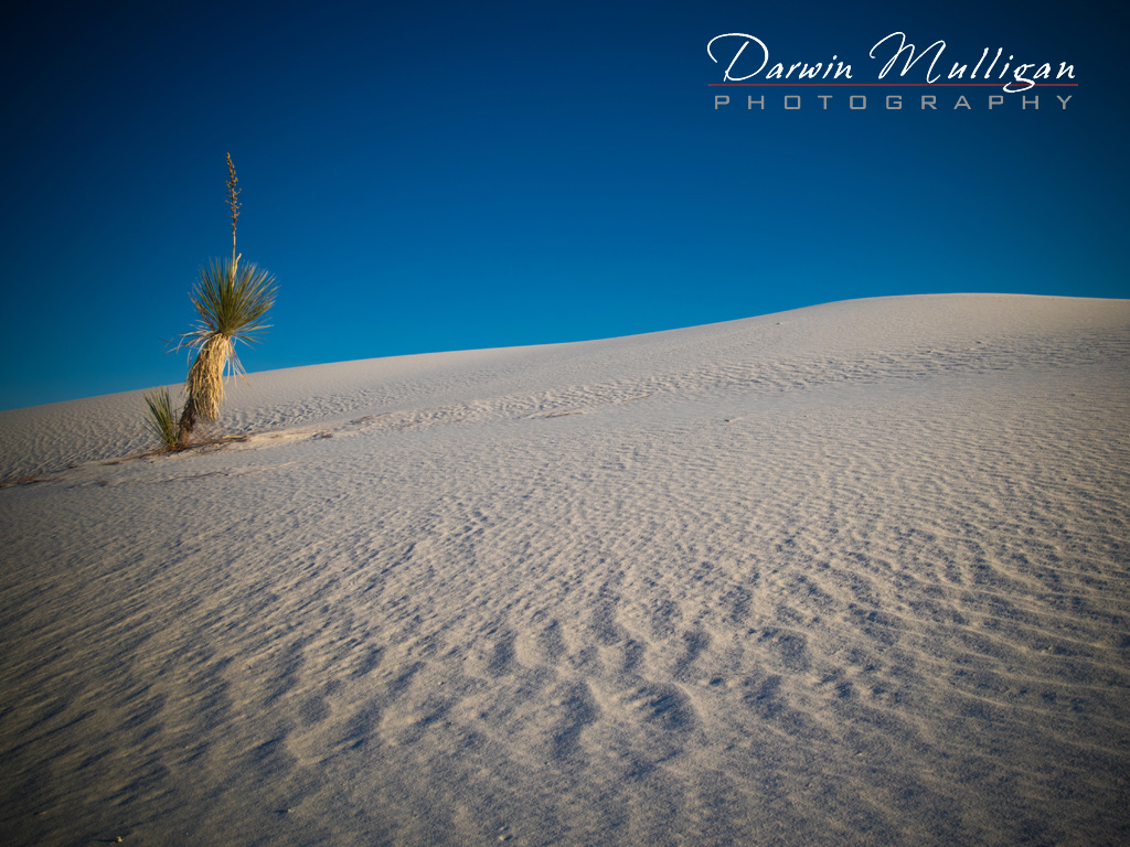 New-Mexico-White-Sands-National-Monument