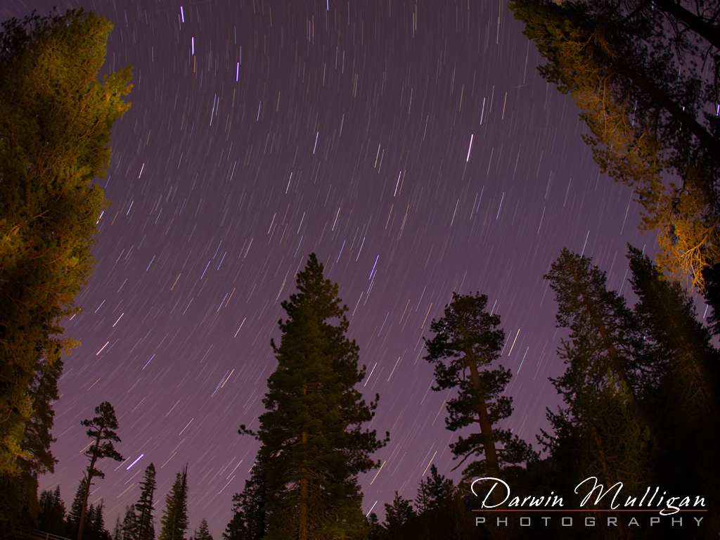 Star-Trails-night-photography-Calaveres-State-Park-California