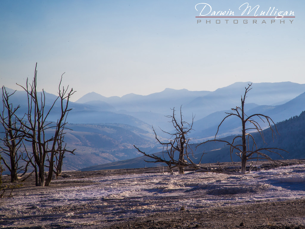 View-from-top-of-Mammoth-Hot-Springs-Yellowstone-National-Park-Wyoming