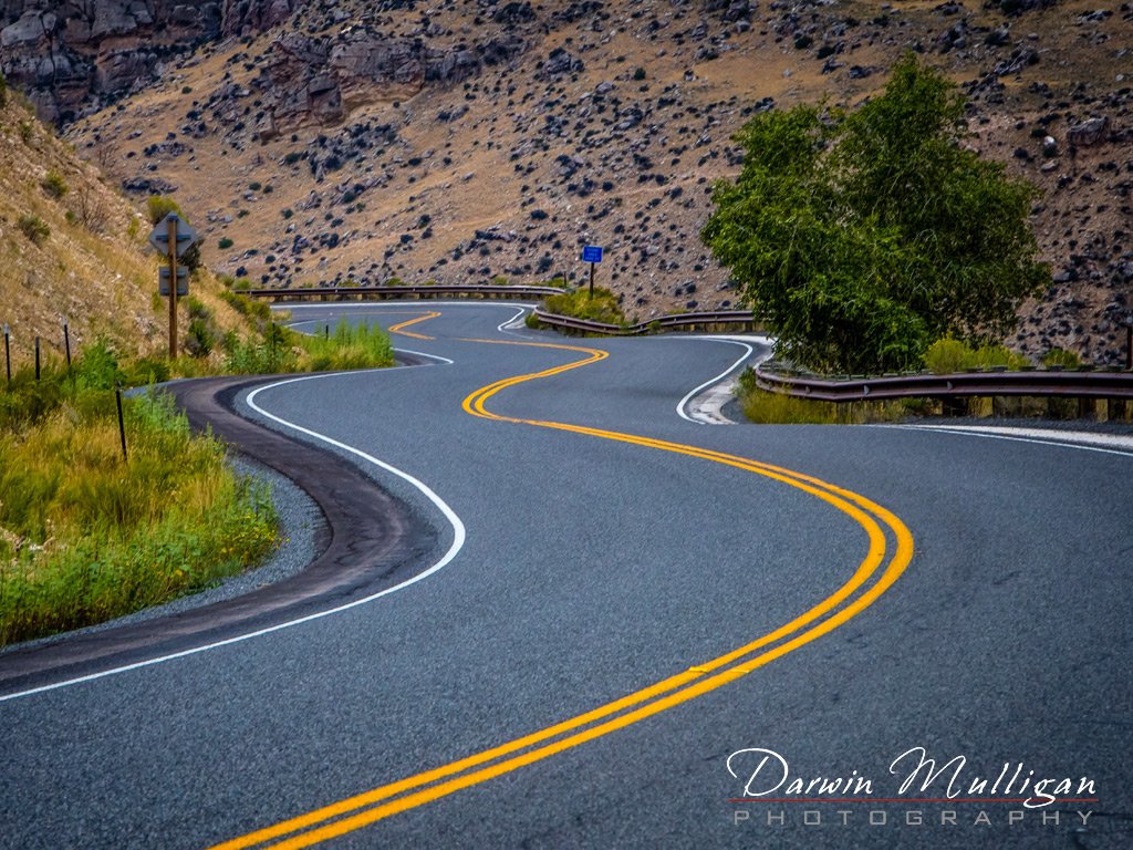 Winding-highway-through-Bighorn-National-Forest-Wyoming