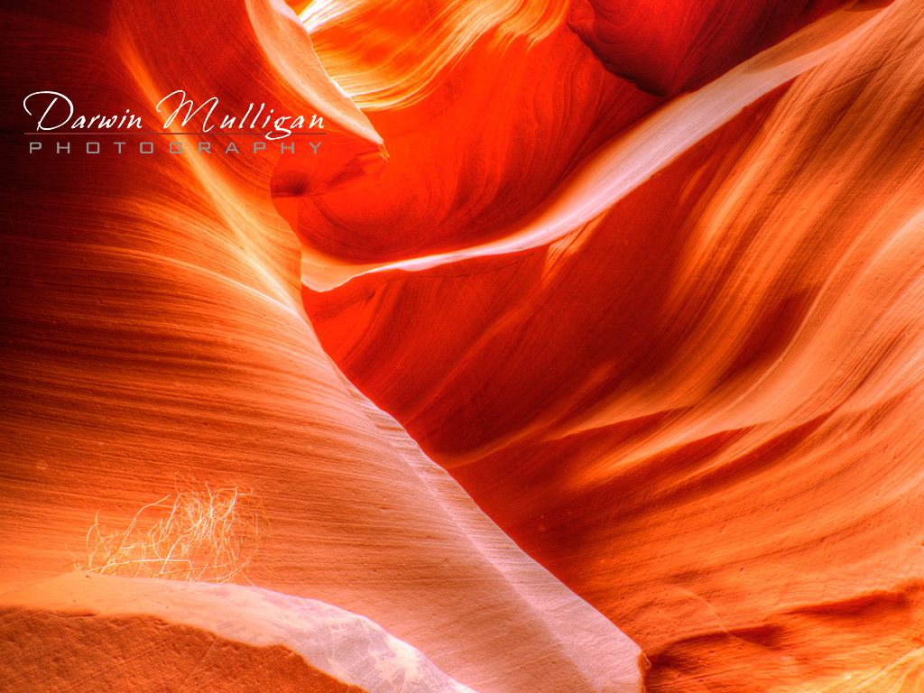 color-abounds-in-lower-antelope-slot-canyon-page-arizona