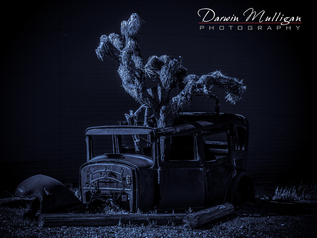 Abandoned-car-with-cactus-growing-Gold-Field-Nevada
