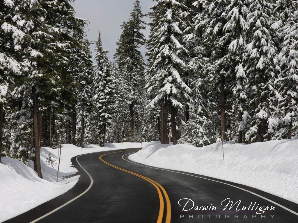 Highway-going-up-to-Crater-Lake-Oregon-showing-snow-in-early-May