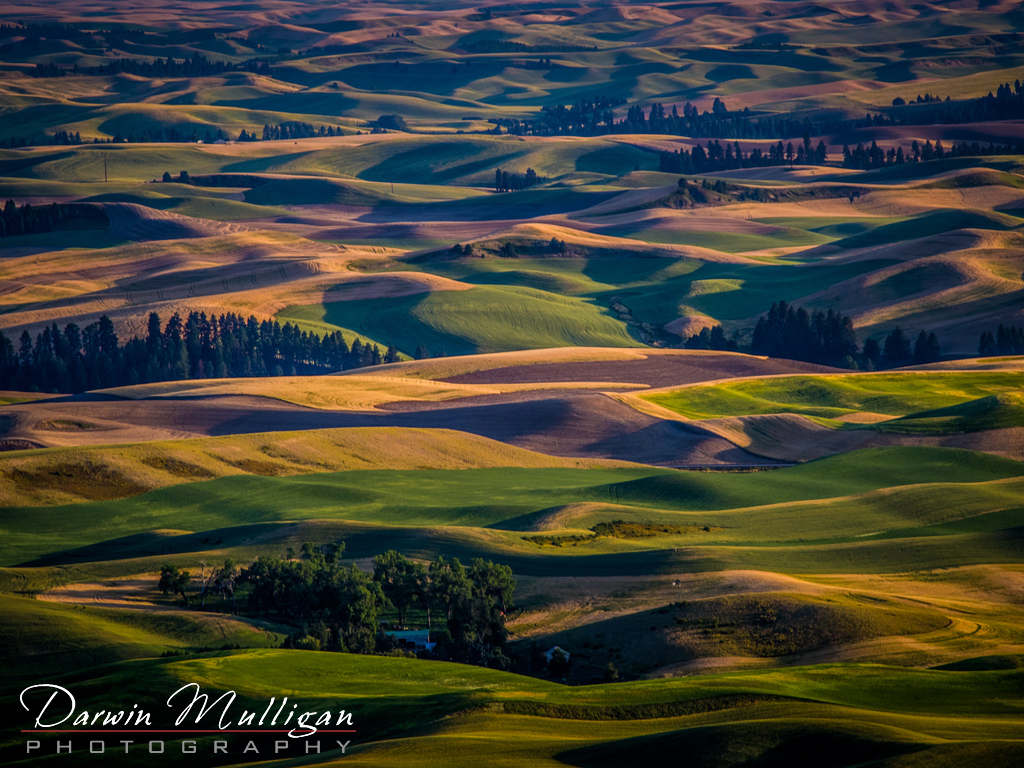 View from Steptoe Butte State Park Washington