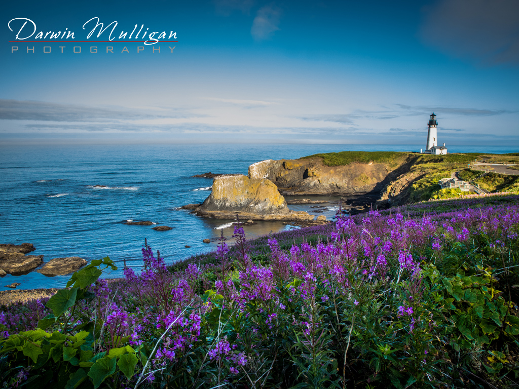 Early morning light and flowers light up Yaquina Head Lighthouse on the Oregon Coast